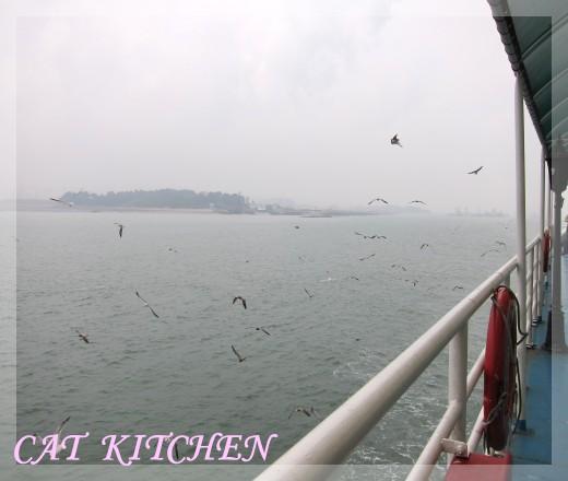 海鷗船2.JPG