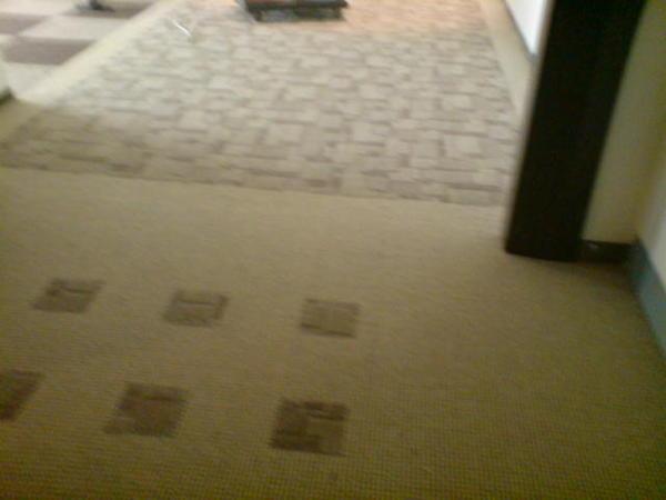 某區隔地毯