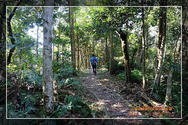 20171223五指山觀音寺生態登山步道 (15)
