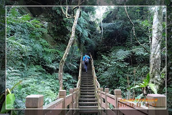 20171223五指山觀音寺生態登山步道 (25)