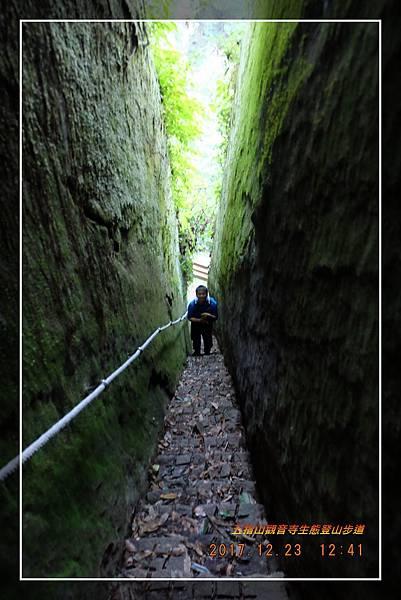 20171223五指山觀音寺生態登山步道 (33)