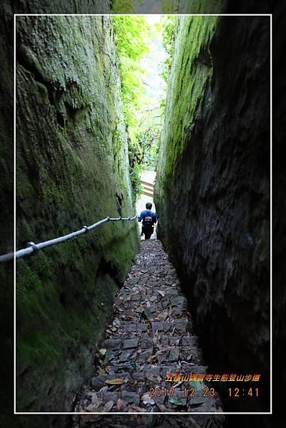 20171223五指山觀音寺生態登山步道 (34)