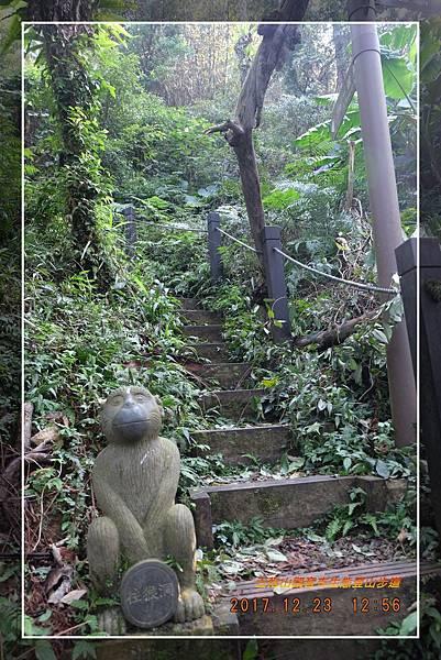 20171223五指山觀音寺生態登山步道 (39)