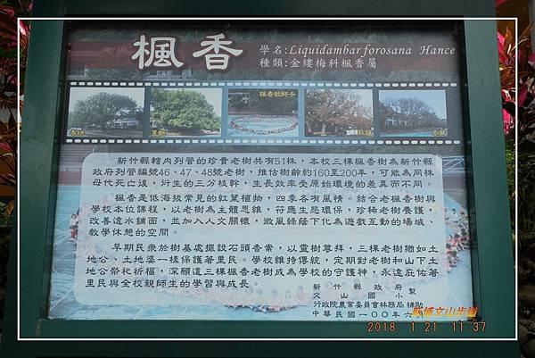 20180121新埔文山步道 (3)