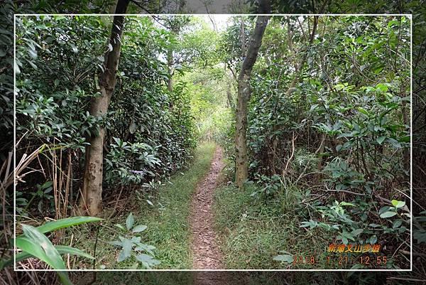 20180121新埔文山步道 (33)