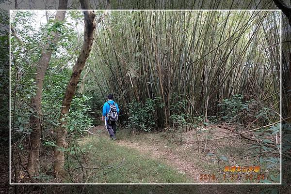 20180121新埔文山步道 (34)