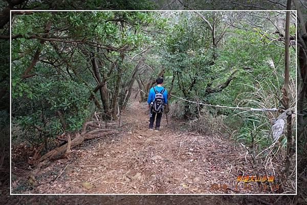 20180121新埔文山步道 (39)