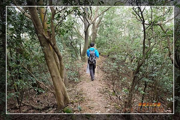 20180121新埔文山步道 (41)