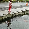 20120924-勝洋水草-03
