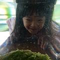 20120924-勝洋水草-17