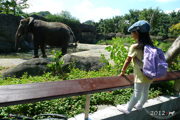 20121003-zoo-11