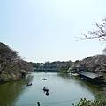 20130319-千鳥ヶ淵緑道-13