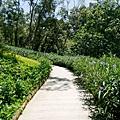 20130804-森林鳥花園-40