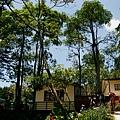 20130804-森林鳥花園-37