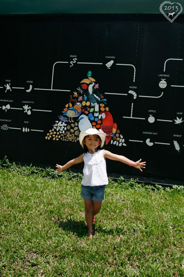 20130804-森林鳥花園-24