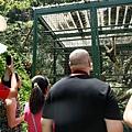 20130804-森林鳥花園-17