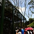 20130804-森林鳥花園-16