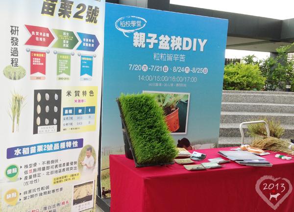 20130825-親子盆秧DIY-01