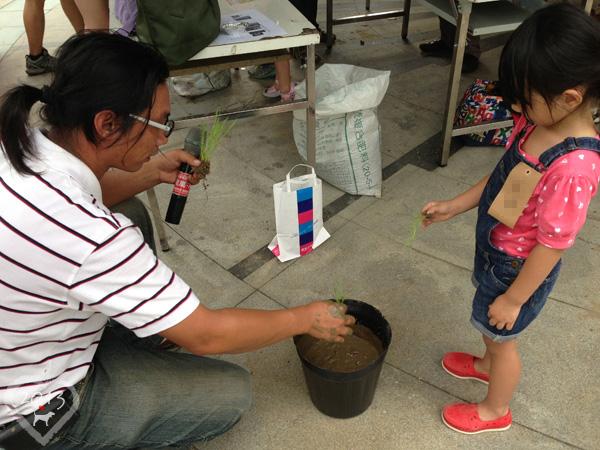20130825-親子盆秧DIY-12