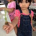 20130825-親子盆秧DIY-11