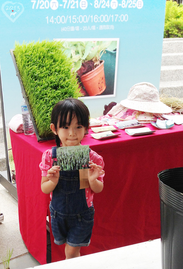 20130825-親子盆秧DIY-16