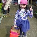 20140216-清香採草莓-03