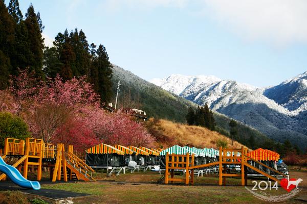 20140220-武陵露營-01.jpg