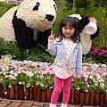 20140301-熊貓-22.jpg