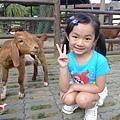 20140525-六福村-31.jpg