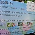 20140531-竹子湖採繡球花-06.jpg