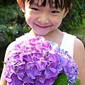20140531-竹子湖採繡球花-18.jpg