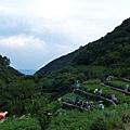 20140531-竹子湖採繡球花-24.jpg