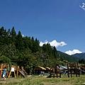 20140714-武陵露營-18.jpg