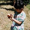 20140715-武陵採水蜜桃-12