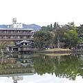 20150309-奈良公園-02.jpg
