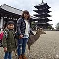 20150309-奈良公園-07.jpg