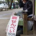 20150309-奈良公園-10.jpg