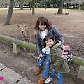 20150309-奈良公園-20.jpg