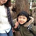 20150309-奈良公園-24.jpg