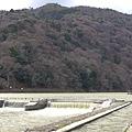 20150310-嵐山景色-03.jpg