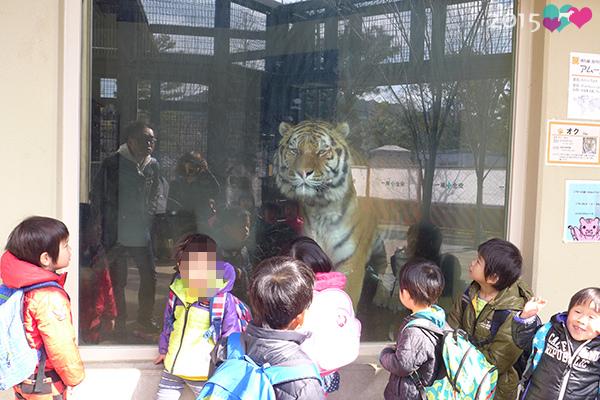 20150311-京都動物園-05.jpg