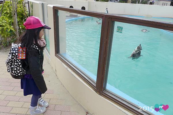 20150311-京都動物園-32.jpg