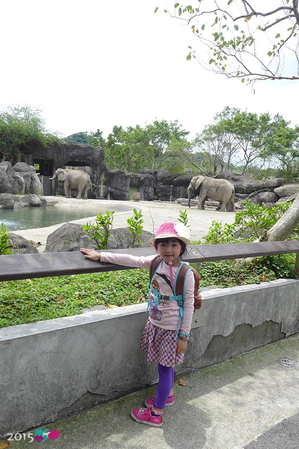 20150423-zoo-01.jpg