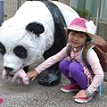20150423-zoo-10.jpg