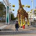 20150313-大阪海遊館-04.jpg