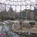 20150314-天王寺動物園-20.jpg