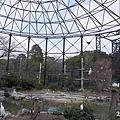 20150314-天王寺動物園-21.jpg