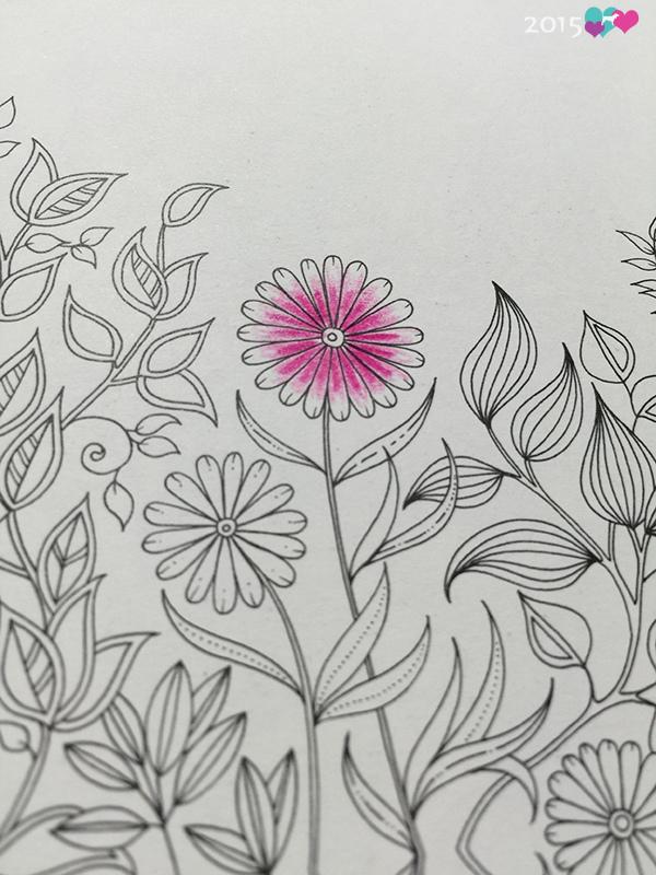 20150731秘密花園-12
