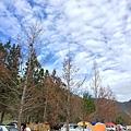 20151219-武陵-27.jpg