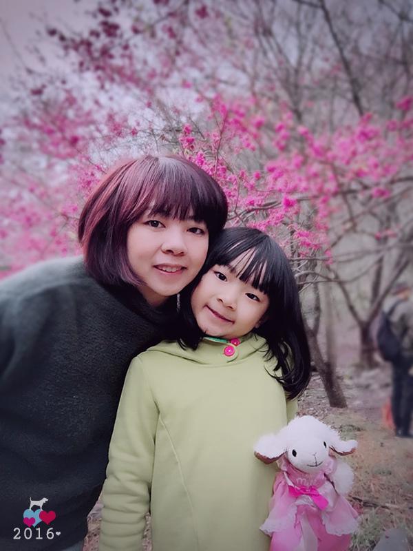 20160219-武陵賞櫻12.jpg